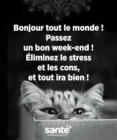 Éliminez le stress et les cons et tout ira bien ! Bon Weekend, Zen Quotes, Inspirational Quotes, New Week Quotes, Stress, Strong Words, French Quotes, My Mood, Good Morning Quotes