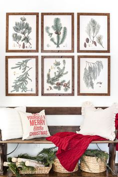 Winter Botanical Gallery Wall Printables | blesserhouse.com - A Christmas entryway bench and a free downloadable set of winter evergreen botanical prints for a printable gallery wall #christmasprintable #christmasentryway #botanicalprints #gallerywall