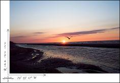Seagull sunrise..  #sunrise #ocean #travel #Charleston