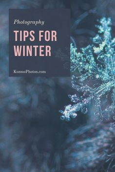 You might not think it but winter is the perfect time to go out and take photos. Just make sure you follow these easy winter photography tips to make the most out of your day. From keeping batteries warm packing a tripod and gloves. You will not want to miss out on these easy beginner tips.