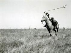 #moodboard #inspiration #boleodoras #horse #black #white #rodeo #argentina #landscape