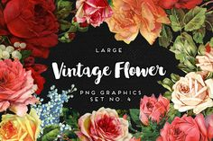 Large Vintage Flower Graphics No. 4 by Eclectic Anthology on @creativemarket