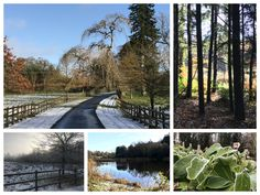 Winter Wonderland at Blessingbourne Estate