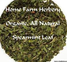 Spearmint Leaf Dried 1 oz. to bulk sizes available at Home Farm Herbery. Place your order now.  We thank you in advance for buying this product as 100% our net proceeds go to St. Jude Children's Research Hospital.   http://www.localharvest.org/spearmint-leaves-organic-C27868