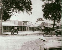 Abbott St,Cairns,Queensland in 1894.   🌹