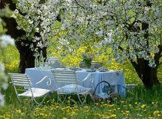 Brabourne Farm: Outdoor Bliss