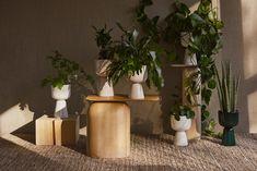 Iittala Nappula plant pot 260 x 155 mm, beige Cacti And Succulents, Potted Plants, Indoor Plants, Green Highlights, Glass Museum, Curve Design, Ceramic Pots, Burke Decor, Nordic Design