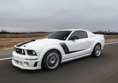 Mustang for Life 2005 Mustang Gt, Roush Mustang, Ford Mustangs, Bronco Concept, Modern Muscle Cars, Classic Mustang, Ford Expedition, Ford Explorer, Car Ford