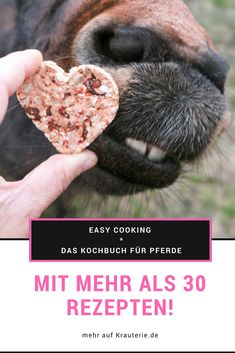 DAS Kochbuch für Pferde - für ein artgerechtes Menü im Futtertrog - mit über 30 Rezepten! Alles über natürliche Fütterung - Kräuterwissen