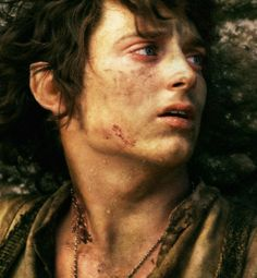 Frodo at the end...