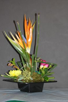 Modern Tropical Yes Please! Designed by The Little Shop of Flowers in Stillwater, OK for information call 405-372-1200
