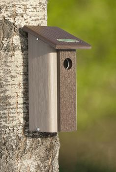 Downy Woodpecker Bird House - Male and female Downy Woodpeckers may take up to three weeks to excavate a nest. Why not give them a helping hand by providing them with a house, so they can move right in. The built-in predator guard provides an extra dose of protection, so they'll be able to raise their families in peace.