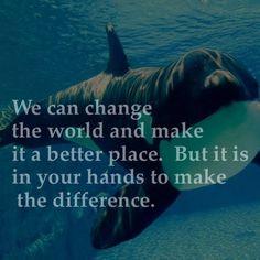 Podemos mudar o mundo e torná-lo num local melhor. Mas está nas tuas mãos fazer a diferença!