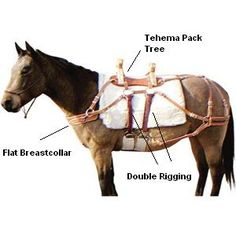 brown pack horse   Horse Packing Gear   Horse Camping Equipment