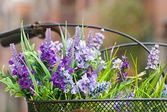 Flowers in bicycle's basket