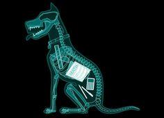 """My dog ate my homework. ( """"Homework Evidence"""" Threadless t-shirt by Glenn Jones . Math Humor, Teacher Humor, Teacher Stuff, Cool T Shirts, Funny Shirts, Foot Detox Soak, Lago Ness, Dog Eating, School Humor"""