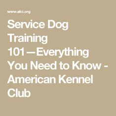 Make sure that you check out my website for amazing tips on dog training at bestfordogtraining.com