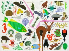 You can never go wrong with Charley Harper!