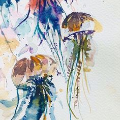 Coco Bee - Artist l Watercolors Watercolor Jellyfish, Jellyfish Painting, Bee Art, Watercolor Artists, Canadian Artists, Marine Life, Sea Creatures, Painting Inspiration, Moose Art