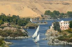 Aswan-Luxor Cruise from Dahab 4 Days 3 Nights Visit the historical monuments of Egypt on this luxurious cruise in the south of Egypt. Enjoy the sightseeing in the ancient cities of Luxor, Aswan, Kom Ombo and Edfu. Visit the West Bank (The Valley of the Kings & Queens, The temple of Queen Hatshepsut) and East Bank (Karnak & Luxor Temples). Spend 3 nights on Cruise board on Full Board basis. Located about 899 km south from Cairo, Aswan is a serene Nile Valley des...