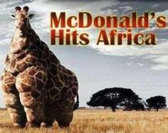 THIS IS WHAT HAPPENS WHEN THEY EAT FAST FOOD!!!!!!!!!! :)
