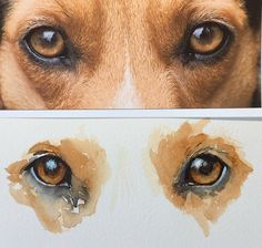 SWS-Sherry-Daerr-Dogs-Eyes07