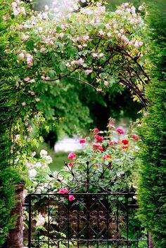 Durch die üppig bewachsenen Rosenbögen genießt man den Blick auf die Rosenbüsche. Alte und neue Rosensorten, die ab dem frühen Sommer ausdauernd blühen, verleihen dem Garten seinen besonderen Zauber.