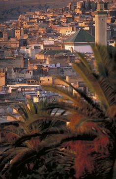 Fez in the sunset #Morocco
