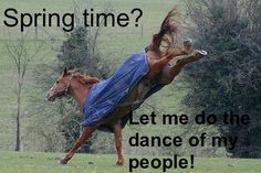 SO true! My horses are insane right now....