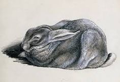 Image result for brian froud sketches