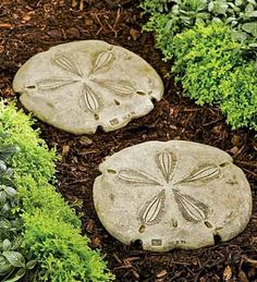 diy stepping stones out of concrete-- Super cute for a beach house