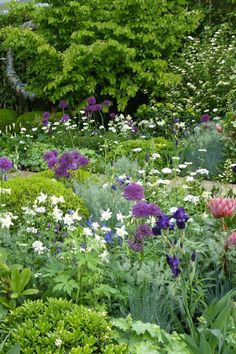 I'd love to visit the Chelsea Flower Show! The Time In Between garden at the Chelsea Flower Show - alliums are great for height Chelsea Flower Show, Beautiful Gardens, Beautiful Flowers, White Flowers, Olive Garden, Flower Garden Design, Garden Borders, Garden Photos, Garden Cottage