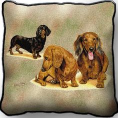 """Artwork by world renowned animal artist, Robert May. 17"""" width x 17"""" height The front is jacquard woven 100% cotton. Not a print. Solid color backing. With piping. Made in the USA. Special Delivery/Ha                                                                                                                                                     More"""