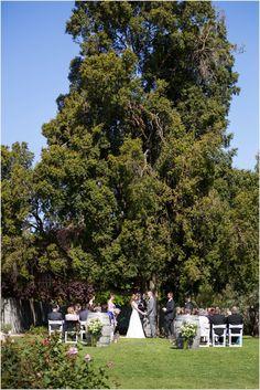 Intimate Outdoor Wedding Ceremony Saltram Winery Barossa Valley Reception