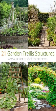 21 Easy DIY Garden Trellis Ideas & Vertical Growing Structures - Create enchanting garden spaces with 21 beautiful and DIY friendly trellis and garden structures, such as tunnels, teepees, pergolas, screens and more! – A Piece Of Rainbow -