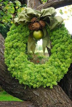 Stunning Picz: Moss Wreath