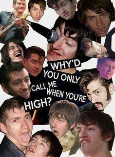 Alex Turner, Green Day, Monkey Memes, Monkey Wallpaper, Arctic Monkeys Wallpaper, Arctic Monkeys Lyrics, Mundo Hippie, The Wombats, Monkey 3