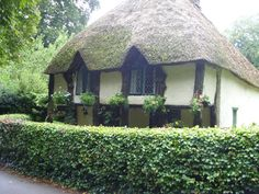 thatched roof cottage in Devon UK
