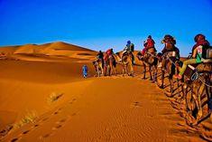 Marrakech to Fes desert tour will take you to the journey of Marrakech to Fes desert via Tizi N'Tichka through the Atlas Mountains, feel the pleasure of a fresh environment. Agadir, Casablanca, Marrakech, Desert Tour, Passion Photography, Atlas Mountains, Photoshop Photos, Photo Effects, Stock Footage