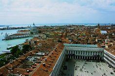 Good memory at Venetia