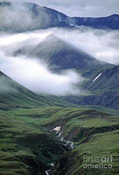 ✯ Mist rises above the Alaska Range - Denali National Park - Alaska