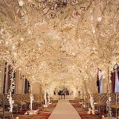 White trees and lights for an indoor winter wedding.