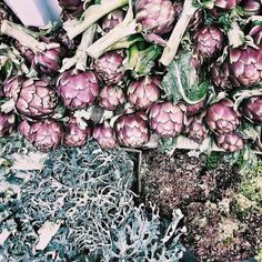 The current farmers market scene (throughout most of Italy) - artichokes & wild bitter greens!