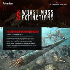 History is riddled with massive die-offs. At times, 96% of Earth's species disappeared. Here's a look at the worst extinction events and what caused them.