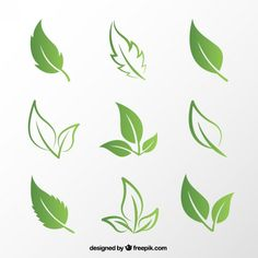 naturaleza freevector freepik verdes vector hojas verde free hoja Hojas verdes Free VectorYou can find Naturaleza and more on our website Photoshop World, Free Photoshop, Leaf Images, Plant Images, Logo Nature, Vector Verde, Goat Logo, Leaf Outline, Leaf Clipart