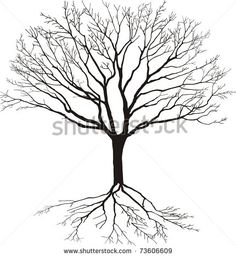 Silhouette of a tree with roots