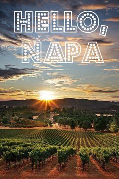 Napa Valley...I'm going there in October!