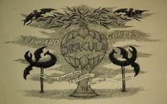 Edward Gorey's Timeless Dracula Edward Gorey, Typography Prints, Dracula, Baroque, History, Bat Tattoos, Illustration, Animals, Image