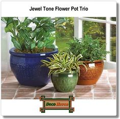 Jewel Tone Flower Pot Trio - Bring a burst of color to your garden! Embossed earthenware flower pots are sumptuous in shades of azure, topaz and peridot. Set includes three separate sizes to hold a variety of your favorite greenery!  Only $55.97 plus FREE shipping!