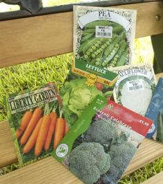 Article on how to prepare for your fall vegetable garden in Houston.